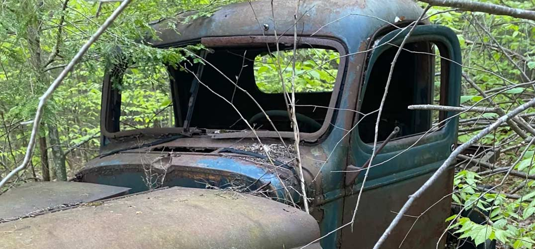 Vintage Truck in the Woods